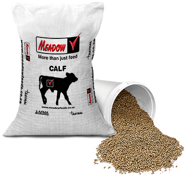 Dairy – Meadow Feeds