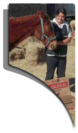 meadow-feeds-assists-nspca-corporate-social-responsibility-meadow-feeds-speciality-feed-products-south-africa-horse