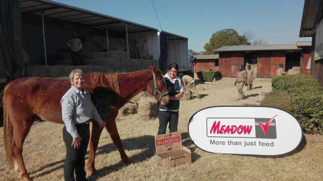 meadow-feeds-assists-nspca-corporate-social-responsibility-meadow-feeds-speciality-feed-products-south-africa